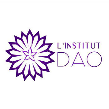 logo-Institut-dao-spiderwebs-toulouse-agence-web